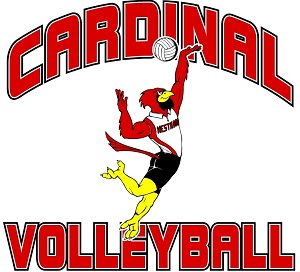 Lady Cardinal Volleyball Camp